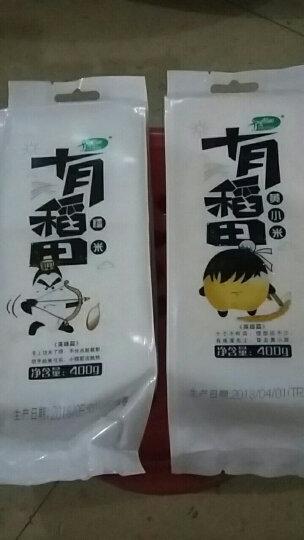 十月稻田 黄小米 400g(无添加 小黄米 月子米 小米粥 五谷 杂粮 真空装 大米 粥米伴侣) 晒单图