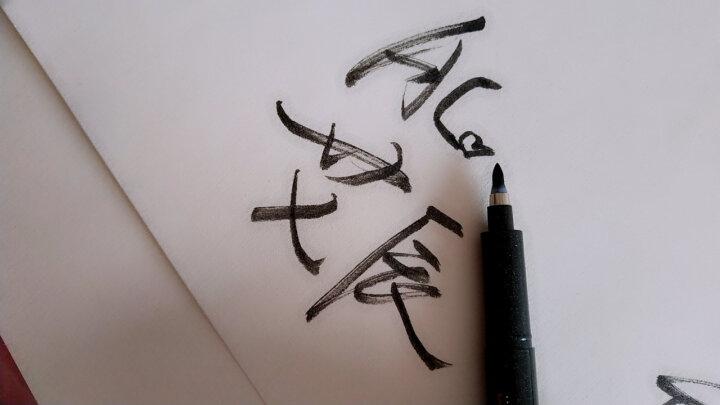 宝克(BAOKE)小楷秀丽笔可加墨水学生练字笔书法专用中楷大楷软头签字笔科学毛笔仿软毛笔书画笔 大字 1+1S8 晒单图