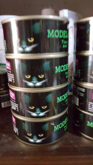 麦富迪模特猫罐头猫咪零食成猫幼猫猫湿粮猫咪恋泰国进口12罐 金枪鱼170g 晒单图