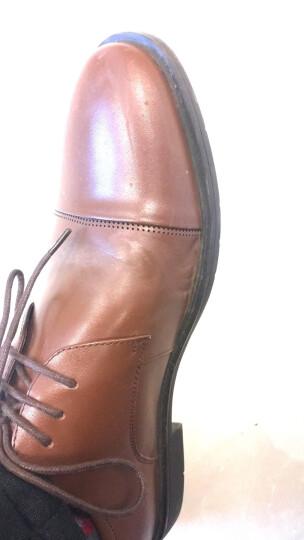 Tata/他她秋季牛皮经典通勤系带男皮鞋13138CM7 棕色 41 晒单图