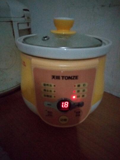 天际(TONZE) DGD10-10EWD电炖锅电炖盅宝宝bb煲全自动电煮粥锅 黄色 晒单图