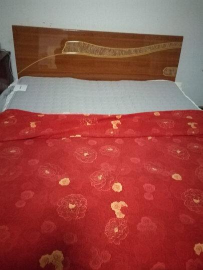 泰和美电热毯水暖毯手机遥控褥子水热电毯热水床垫孕婴毯地暖垫电热板加热电器单人双人水循环热敷 经典红 灰色床垫180cm*200cm 晒单图