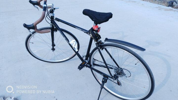 凤凰(Phoenix) 复古公路自行车14速禧玛诺变速公路车700C男女越野公路单车 复古-蓝 晒单图