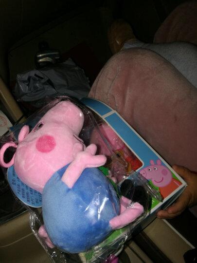 小猪佩奇Peppa Pig粉红猪小妹佩佩猪 毛绒玩具 抱枕公仔布娃娃玩偶系列 小号一家四口套装19cm+30cm 晒单图
