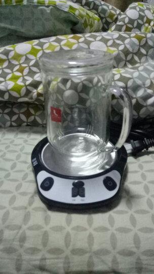 雅集 玻璃杯 直觉杯 礼盒装三件式过滤茶杯耐热杯子 晒单图