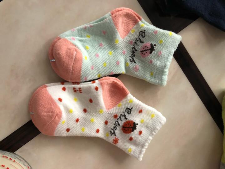 浪莎儿童袜子 精梳棉春夏网眼透气男童女童袜 6双礼盒-小猫咪 脚长16-18cm(适合3-5岁) 晒单图