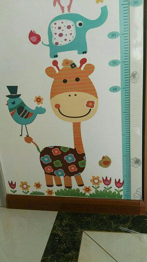 乐宅 卡通卧室儿童房装饰墙贴纸可爱幼儿园走廊彩色铅笔墙角踢脚线贴画 D款春天相框-MM6013-(X6-2-2) 特大号 晒单图
