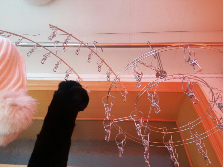 温朵娜(VIENDONA)不锈钢衣架8夹子防风挂钩多功能衣服晾晒架袜子内衣架子 8夹衣架(4个装) 晒单图
