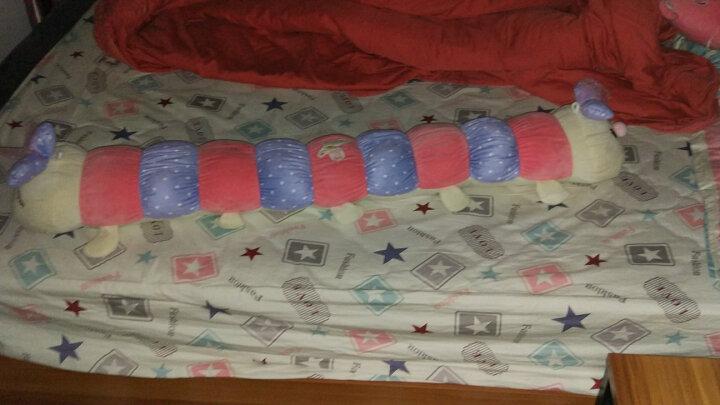 萌萌猪七彩毛毛虫双头彩虫靠垫抱枕儿童玩具公仔安抚毛绒玩具布娃娃 蓝色双头毛毛虫 1.1米 晒单图