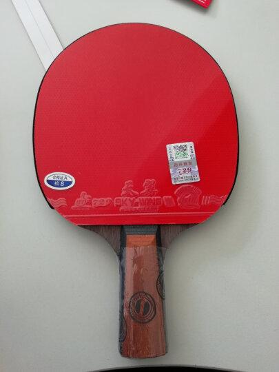 天津友谊729 乒乓球拍胶皮乒乓球底板胶皮 套胶 729-5  天翼 反胶套胶 快攻弧圈型 天翼 红色1片 晒单图