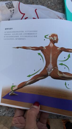 德式无器械健身:你的身体就是最好的健身房 晒单图