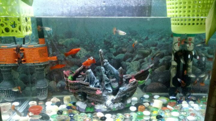 【钜惠价】金利佳(Jeneca)鱼缸用盐 水族专用盐 观赏鱼 热带鱼 盐罗汉鱼 盐金鱼用盐 海盐矿物 500克颗粒状 晒单图