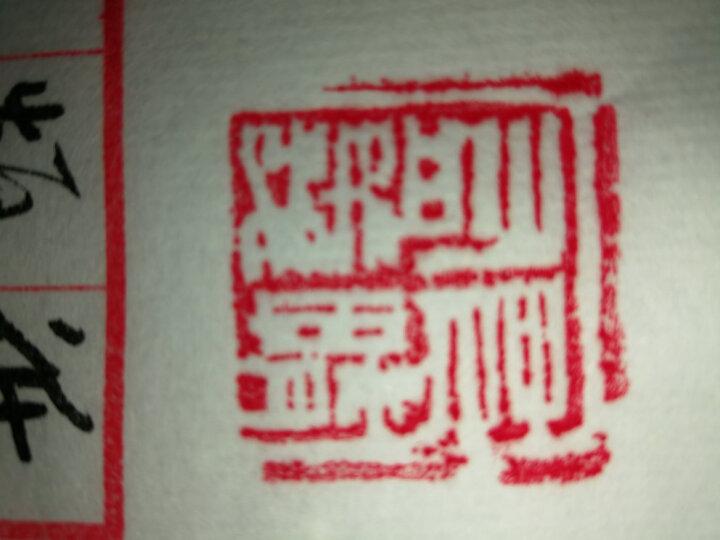 篆刻石料套装初学者练习章料姓名书画书法印章寿山石青田石A5型号28块装 晒单图
