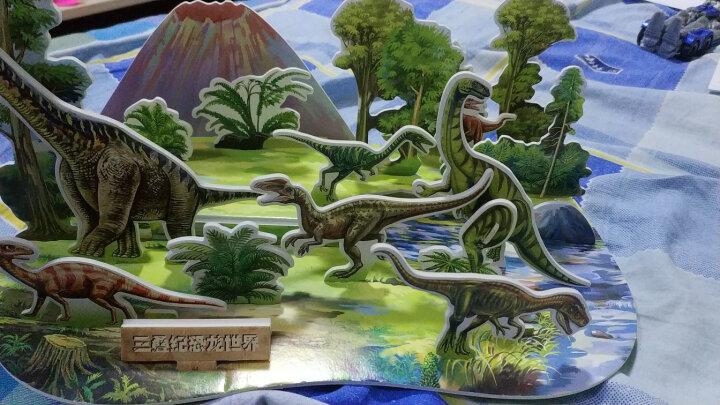 恐龙世界立体大拼插:三叠纪恐龙世界 晒单图