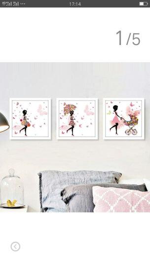 小清新卧室床头装饰画女孩儿童房挂画简约现代客厅沙发背景墙壁画餐厅有框画花仙子 C款一套三幅 45*45cm黑色框 晒单图