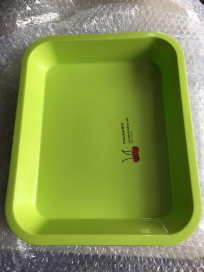 茶花茶具长方形托盘茶盘水杯托盘餐盘水果盘塑料茶盘 绿色 晒单图