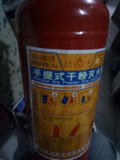 星浙安车载灭火器 汽车用家用商用厂房用干粉灭火器手提式ABC类1KG2KG3kg4公斤 商用家用/干粉3公斤 晒单图