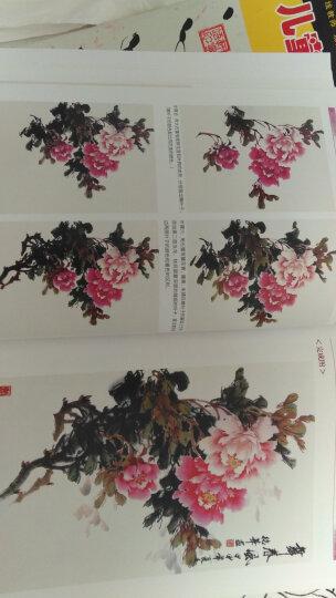 中国画画法丛书:写意牡丹画法 晒单图