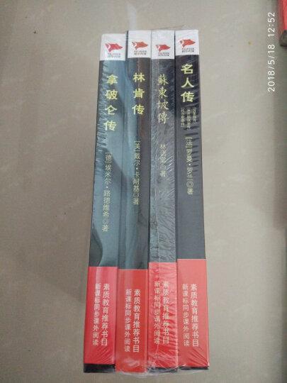 名人传记精选 名人传+林肯传+苏东坡传+拿破仑(套装共4册)/中小学生推荐阅读 晒单图
