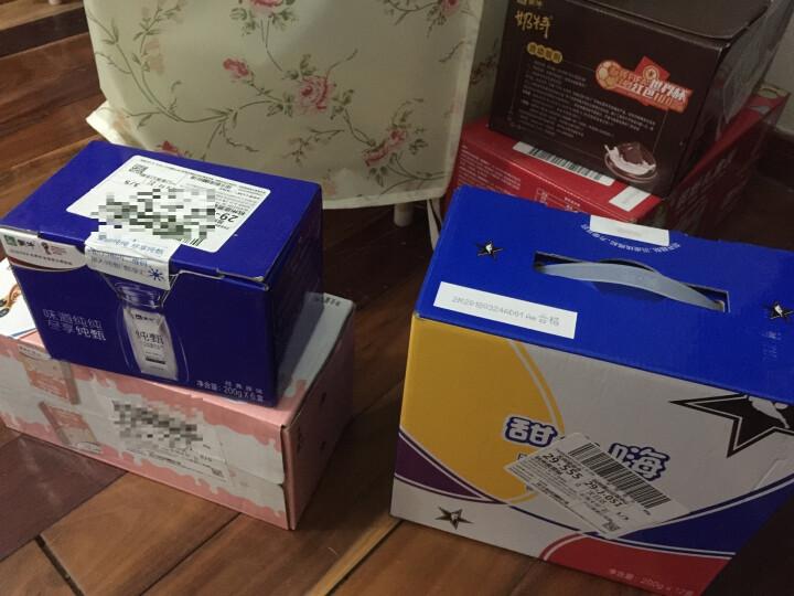 蒙牛 纯甄常温酸牛奶 200g*6盒*2箱 组合装 晒单图