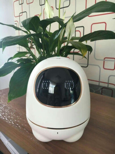 科大讯飞阿尔法蛋机器人小蛋早教益智陪伴语音对话智能机器人玩具 白色 晒单图