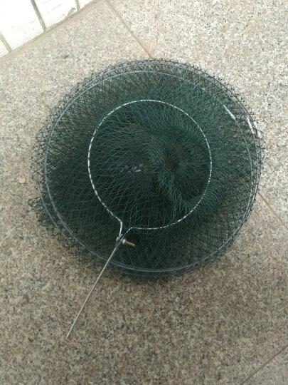 胶丝线鱼护软钢丝折叠鱼篓简易便携渔护鱼兜渔具渔网垂钓用品加长鱼护 4层 晒单图