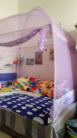 辰羽  升级版蚊帐蒙古包三开门圆顶加高加密蚊帐1.2米1.5米1.8米床有底拉链可折叠支架 花仙谷(紫色) 1.8m床 晒单图