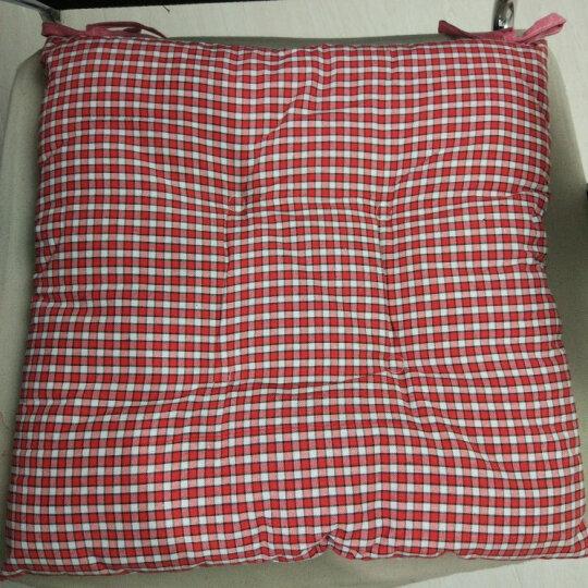 一朵  坐垫 椅子垫 冬季加厚办公坐垫 靠垫座垫 布艺卡通椅子做垫 蓝咖格带扣子 43*43 晒单图