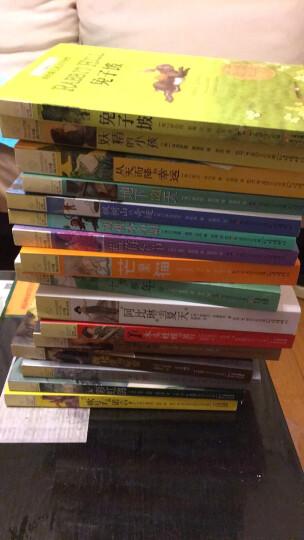 长青藤国际大奖小说系列共16册 兔子坡 十岁那年 作文里的奇案等儿童文学小说 晒单图