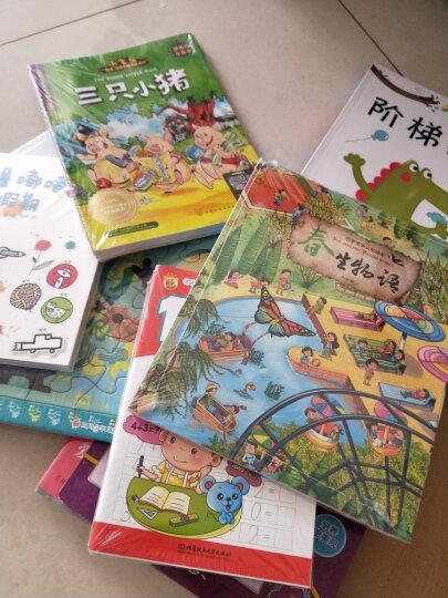 小飞象儿童英语分级亲子共读绘本(提高级全4册) 晒单图