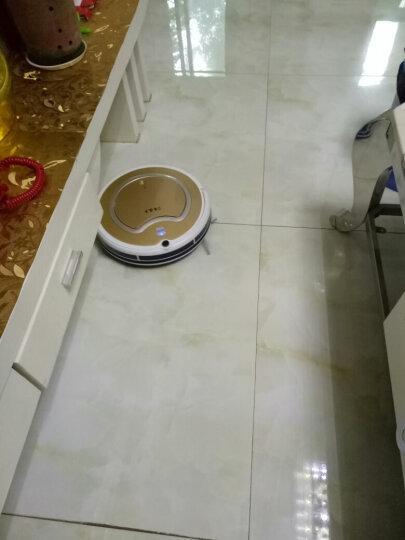 登科清道夫扫地机器人家用全自动充电智能吸尘器拖地机智能规划清扫一体机 田园 清新月季 晒单图