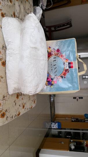 富安娜家纺 冬被95%白鹅绒蚕丝绵提花羽绒冬厚被正品臻美丝棉白鹅绒加厚美芯被 月 白色 1.8m(230*229cm) 晒单图