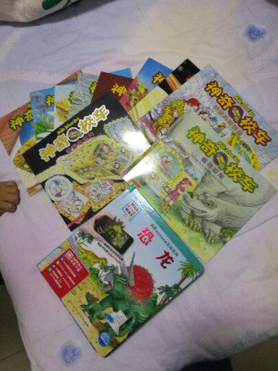 神奇校车第一辑图画版全12册 学校推荐读物 7-10岁小学生课外阅读版儿童读物教辅科普百科 晒单图