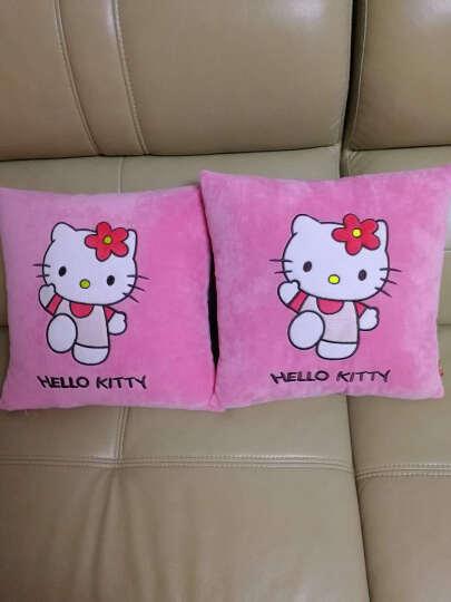 碧水情缘可爱卡通客厅家用沙发抱枕靠垫汽车午睡办公室方毛绒抱枕套不含芯 熊猫棕色 45x45cm(枕套+枕芯) 晒单图