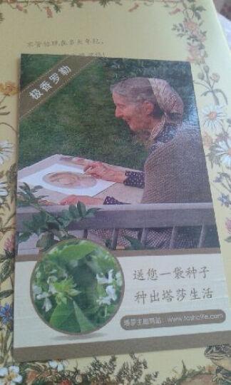 塔莎奶奶的美好生活1:跟着感觉走就对了 晒单图