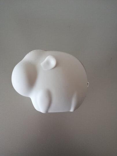 名创优品(MINISO)硅胶零钱包动物园系列新款个性可爱迷你拉链包便携糖果色硬币包 6色 小象裸粉色 晒单图