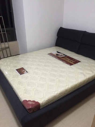 丽美诗 席梦思床垫 棕垫 弹簧床垫 可以全拆洗床垫 828 1cm乳胶+环保椰梦维+精钢弹 1.8*2.0 晒单图
