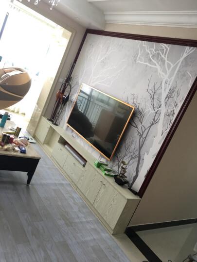 勃兴 碳晶碳 电热膜地热 纤维汗蒸房电采暖条状 炕板电热毯 每平米单价 定做尺寸 晒单图