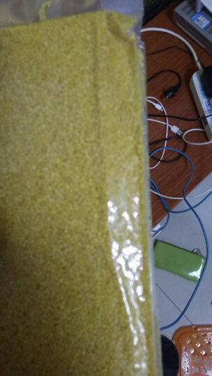 柴火大院 有机 黄小米 400g(无添加 小黄米 月子米 小米粥 五谷 杂粮 真空装 大米伴侣) 晒单图