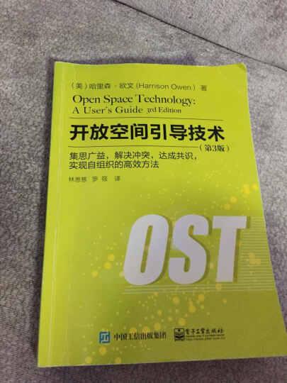开放空间引导技术:集思广益,解决冲突,达成共识,实现自组织的高效方法(第3版) 晒单图