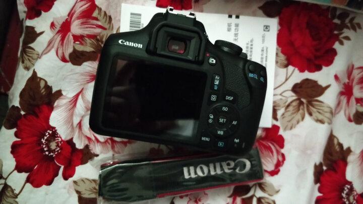 佳能(Canon) 入门/家用数码单反相机  EOS 1500D (18-55mm IS II镜头)套机 晒单图