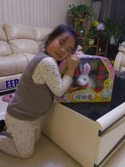 mimiworld 韩国MimiWorld小女孩过家家儿童玩具套装 迷你玫美 学语小鹦鹉MW6300 晒单图