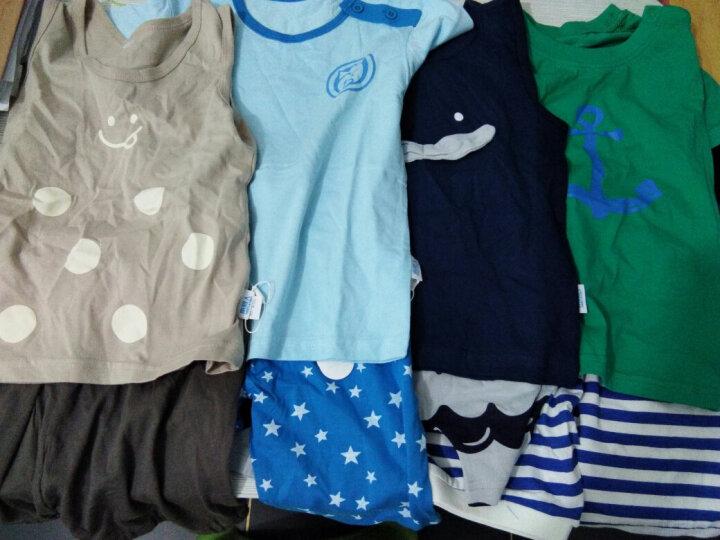 南极人(Nanjiren) 南极人宝宝2018夏季纯棉短袖套装婴儿全棉夏天衣服新款儿童童装 树叶小象-浅花灰 80CM 晒单图