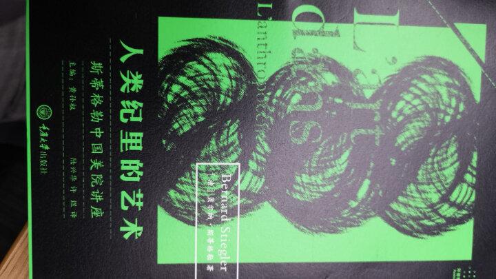 人类纪里的艺术:斯蒂格勒中国美院讲座 晒单图