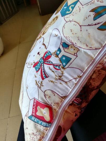南栀家纺 优舒绒抱枕被空调被夏被夏凉被汽车沙发靠背座椅靠垫小被子旅行毯抱枕膝毯 苹果 50cm*50cm展开150*195 晒单图