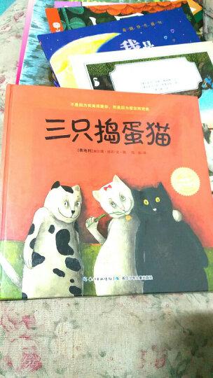 海豚绘本花园:三只捣蛋猫(精装硬壳封面)儿童成长图画故事书 晒单图