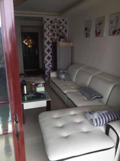 【3件7折】慕尼思丹 沙发 布艺沙发 单双三人皮布沙发 客厅家具 懒人沙发 现代简约沙发床 双扶手单人位 晒单图