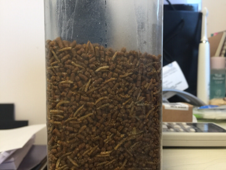 盖帝尔鸟粮鸟食鹩哥食八哥料鸟类饲料营养食品750g 晒单图