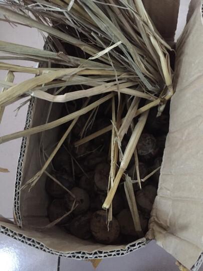 博多客 马蹄 5斤装 荸荠  新鲜蔬菜 生鲜  杨梅 红地栗 地梨 农家 天S 晒单图
