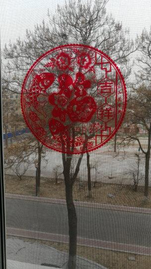 苏兹(suzy) 福字玻璃静电贴膜10张 剪纸春节节装饰品 门窗静电贴纸 窗花 吉祥如意 30*30 晒单图